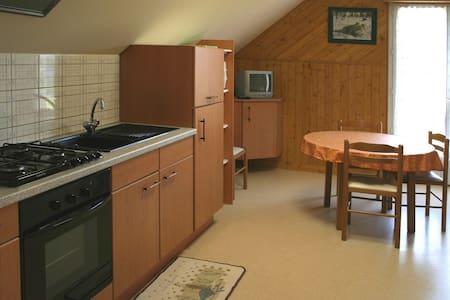 Appartement dans un parc de 8 Ha - Lion-en-Sullias