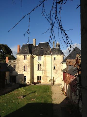 Gîte au château - Chinon / vignoble - La Roche-Clermault - House