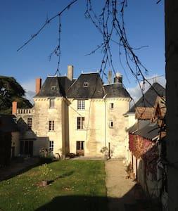 Gîte au château - Chinon / vignoble - La Roche-Clermault