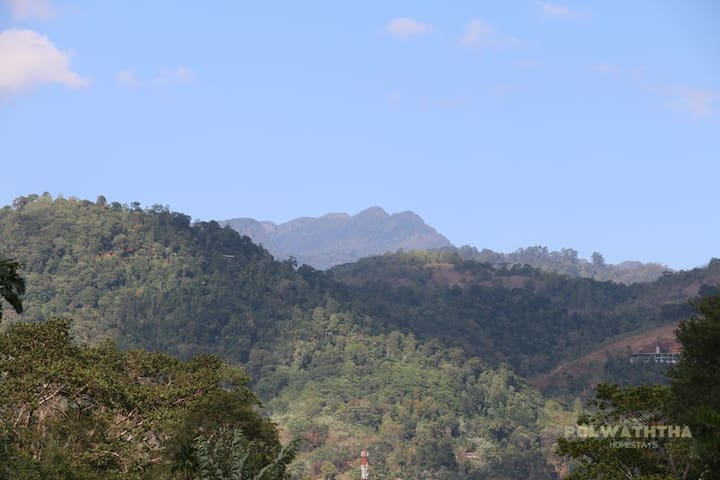 View of the Knuckles mountains