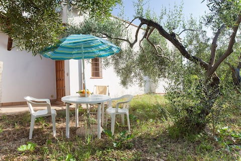 Secret in the olive garden