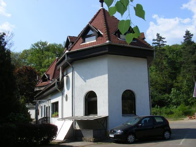 No1 Étterem és Vendégház Parádfürdő - Parád - Talo