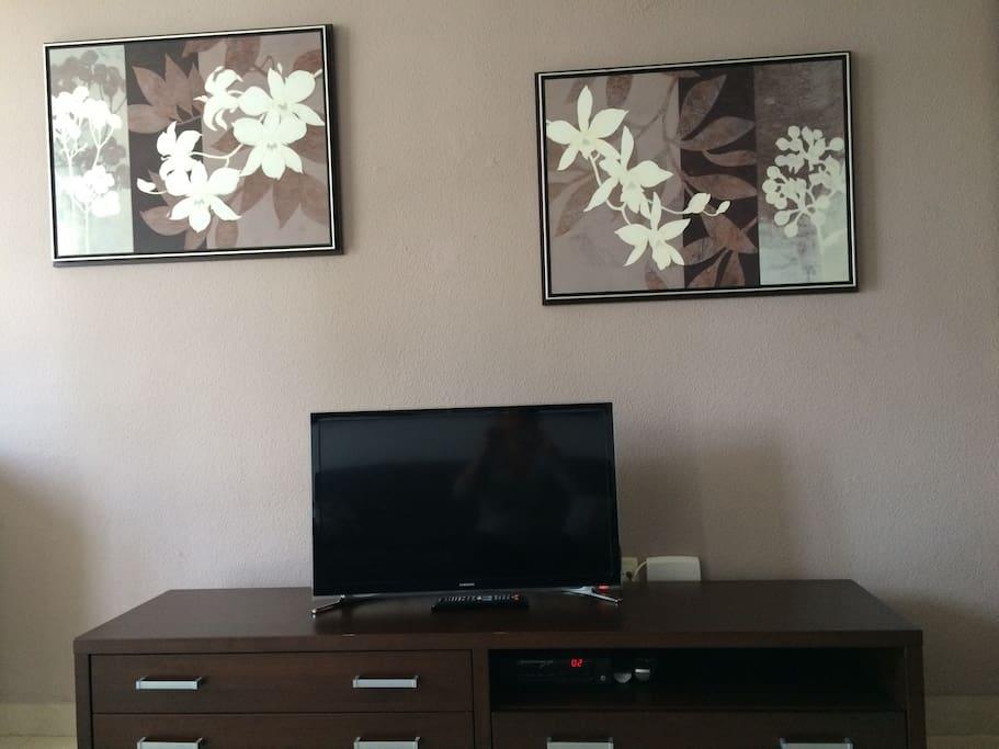 La televisión con todos los canales para disfrutar cuando se esté en la casa.