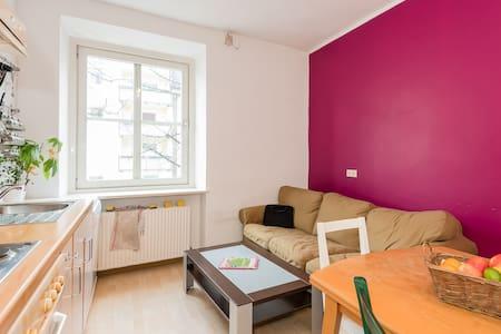 Authentic Munich 2 - Appartement