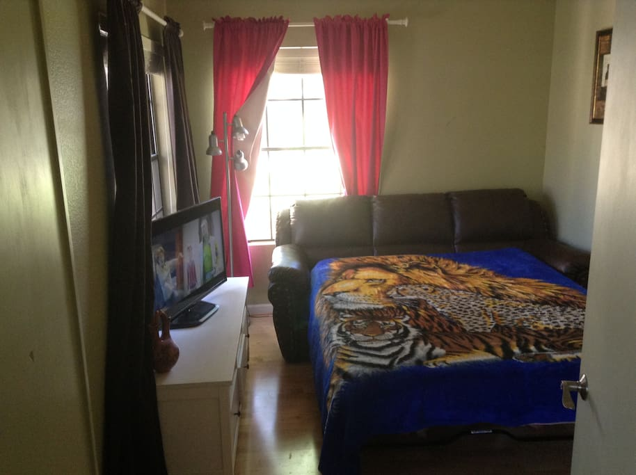 Guest room with queen sized sofa bed.