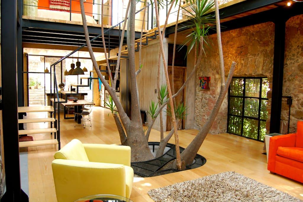 CASA ZEN - Our beautiful Main Floor Living Space