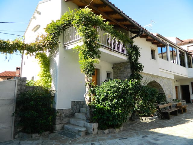 Staying for 4 in the Karst with courtyard+p - Štanjel - Casa