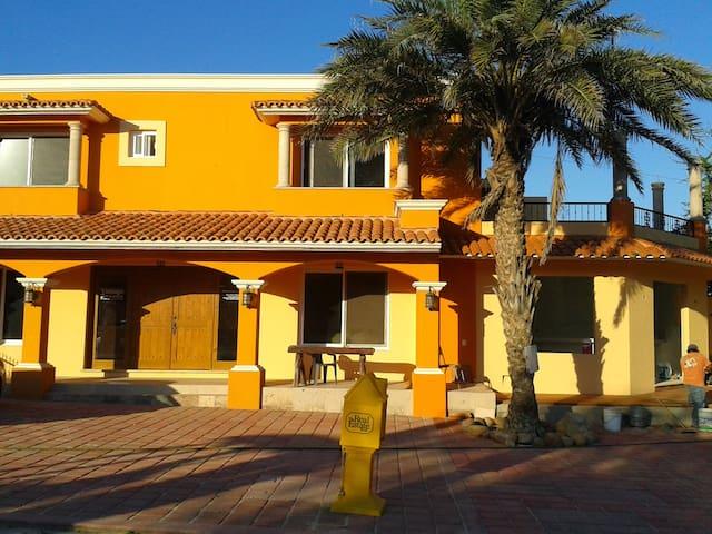 Studio - San José del Cabo - Appartement