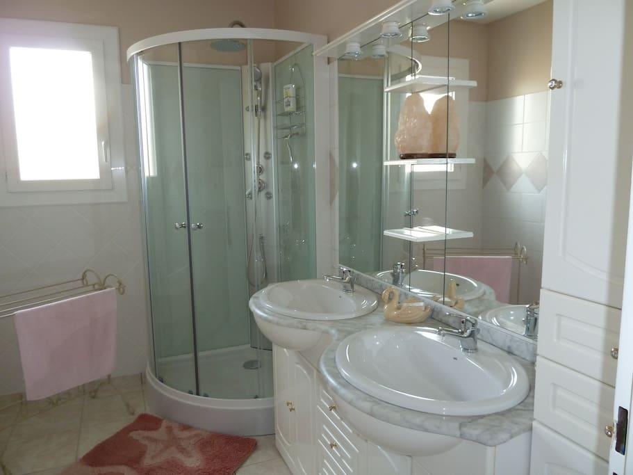 salle de bain avec douche et deux vasques