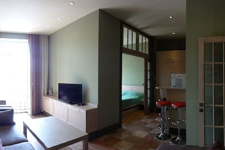 Beautiful, atypical, 1 bedroom - Apartemen