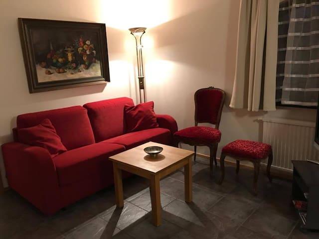 Nice Apartment in Reykjavik 110 - Reykjavík - Apartamento