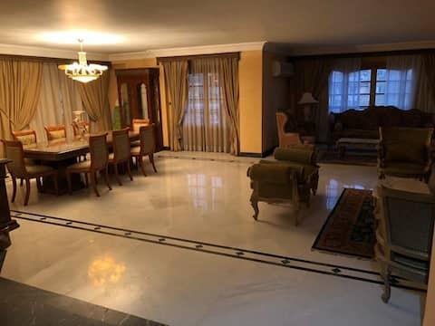 Quiet Spacious apartment in Nasr City