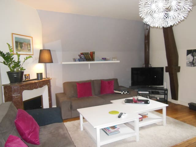 Amboise hyper centre - Amboise - Apartment