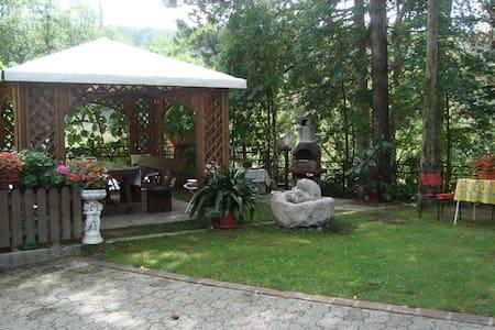 Relax into the Green - Sanzeno - Huoneisto