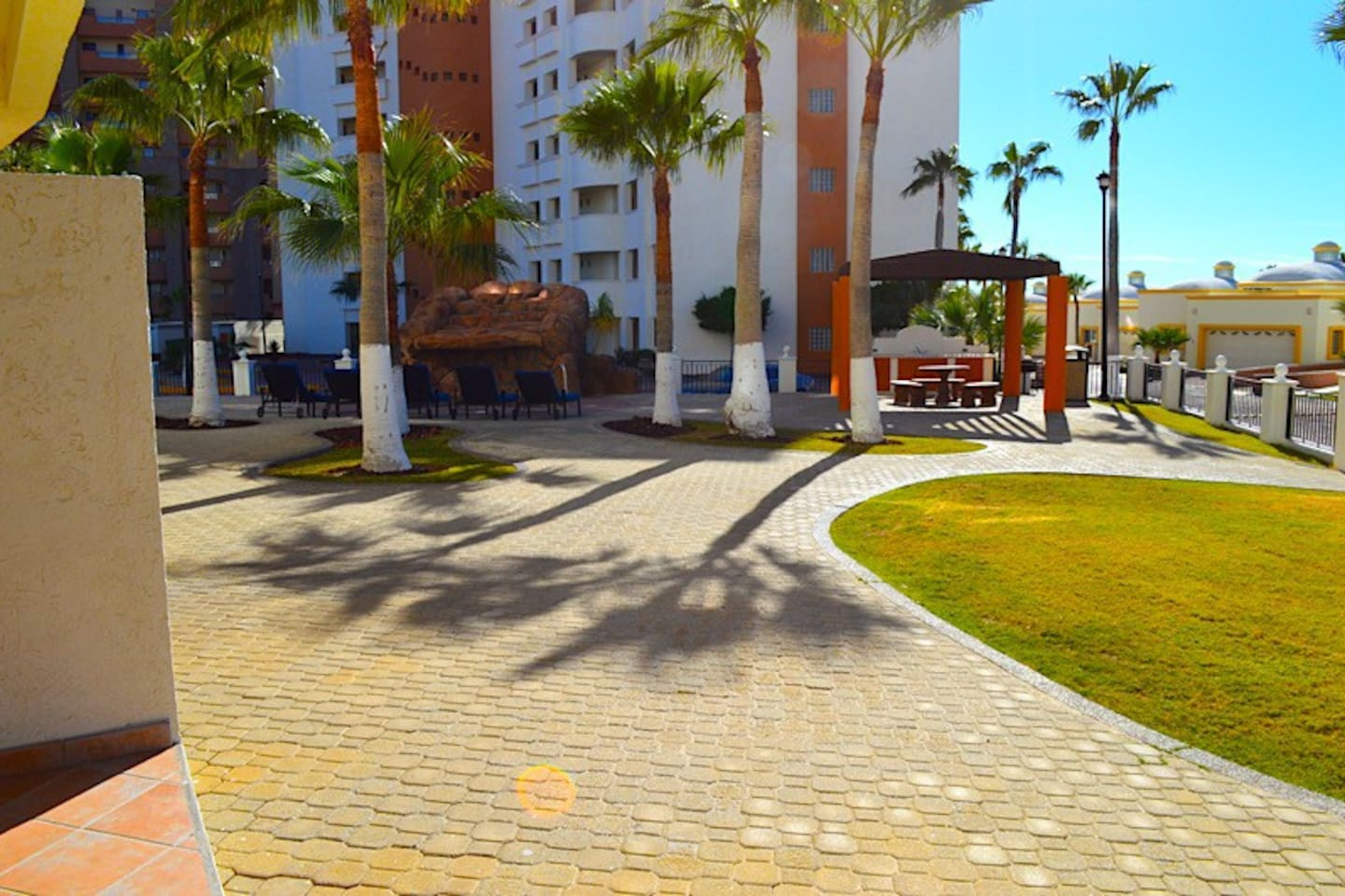 Boardwalk,Path,Sidewalk,Walkway,Palm Tree