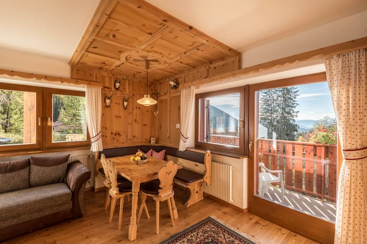 "Cosy Apartment ""Ferienwohnung Sella Seis"" close to Seiser Alm with Mountain View, Wi-Fi, Balcony & Garden; Parking Available, Pets Allowed"