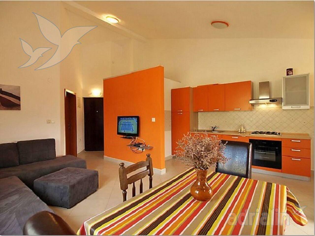 apartment IVE
