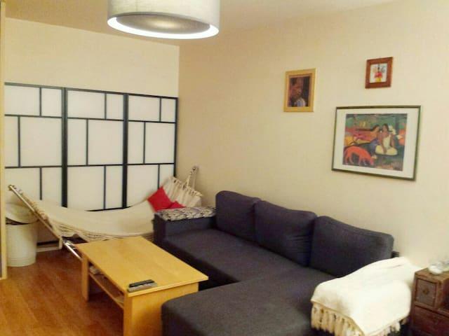 Appartement métro Front populaire  - 聖但尼 - 公寓