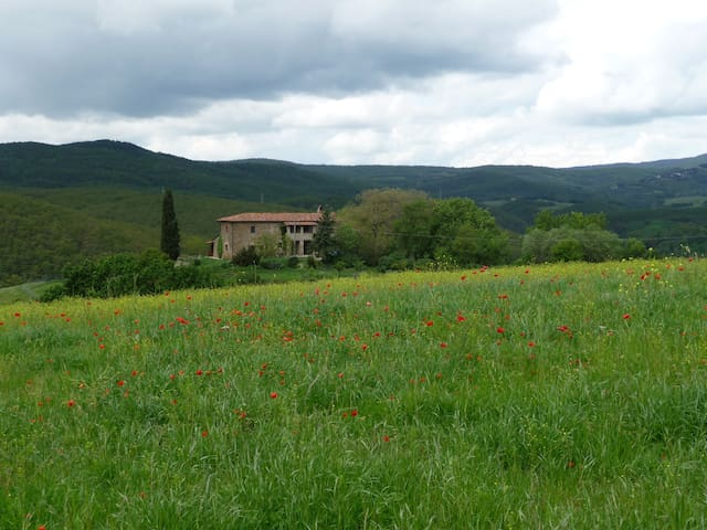 Charming apartment in green Umbria - San Venanzo - Apartamento