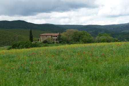 Charming apartment in green Umbria - San Venanzo