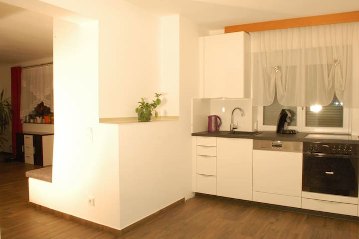 modern apartment near Linz, 110 sqm, 4 bedrooms