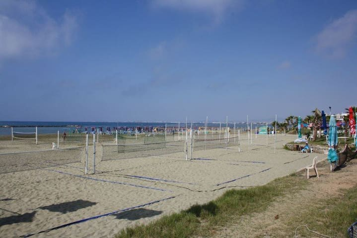 Organized Beach with volleybal and or raquets sand courts.
