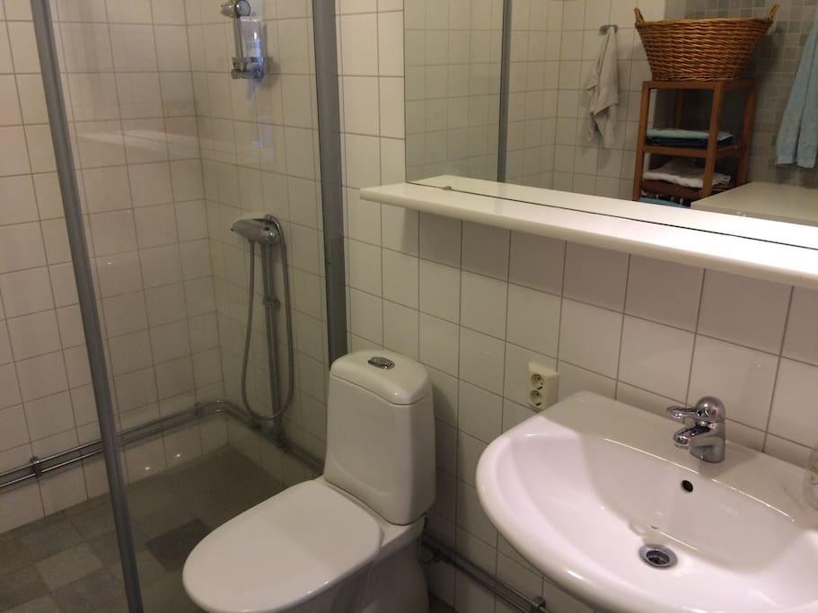 Toalett med dusch och tvättmaskin och torktumlare.