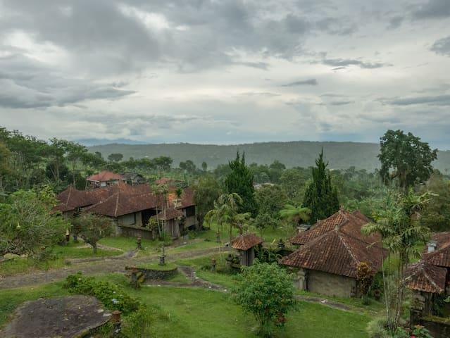 Quiet Jungle Villa