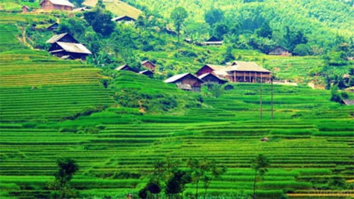 Sapa trekking for Backpackers
