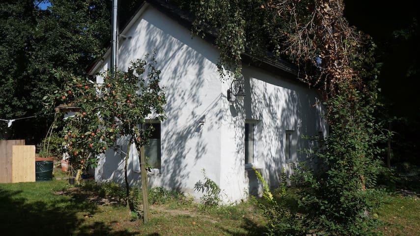 Walddomizil mit Sauna und eigener Terrasse