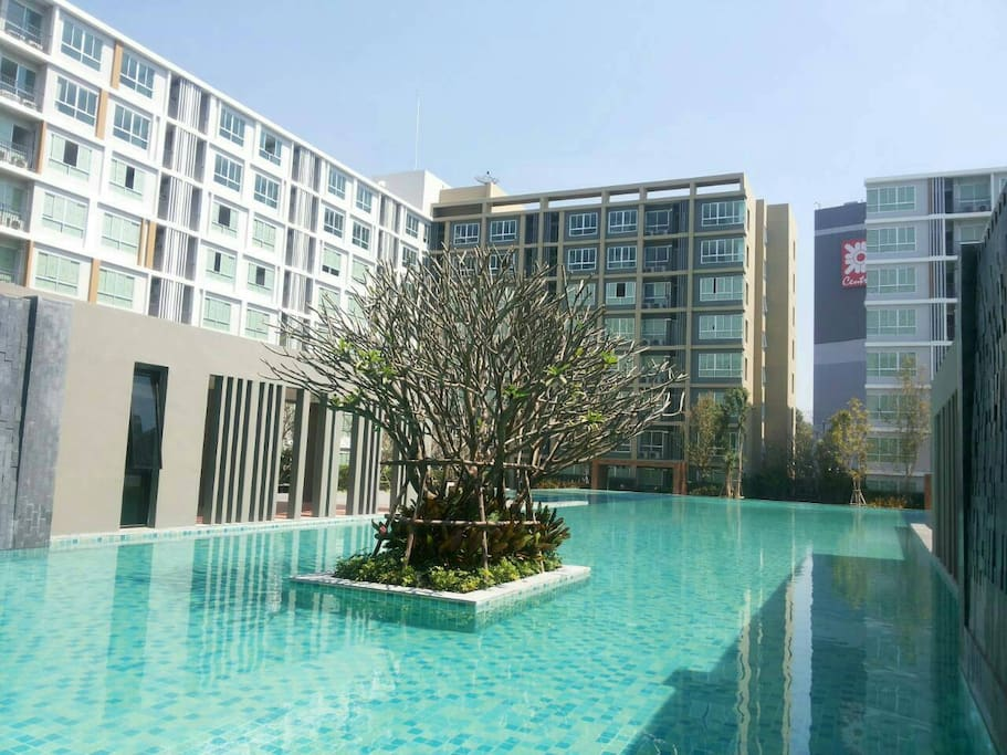 Magnificent Garden Pool Chiangmai Apartments For Rent
