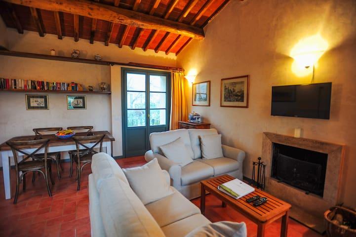Villa Limoni in Siena - Lecchi in Chianti - Leilighet