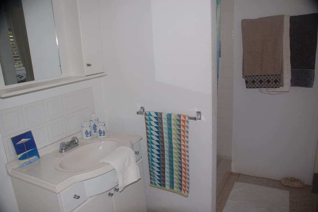 clean and spacious bathroom with walk in shower