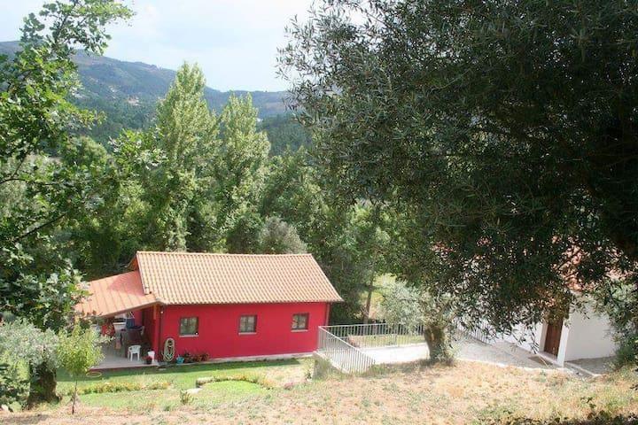 Living in heaven - A casa cor de rosa (novo)