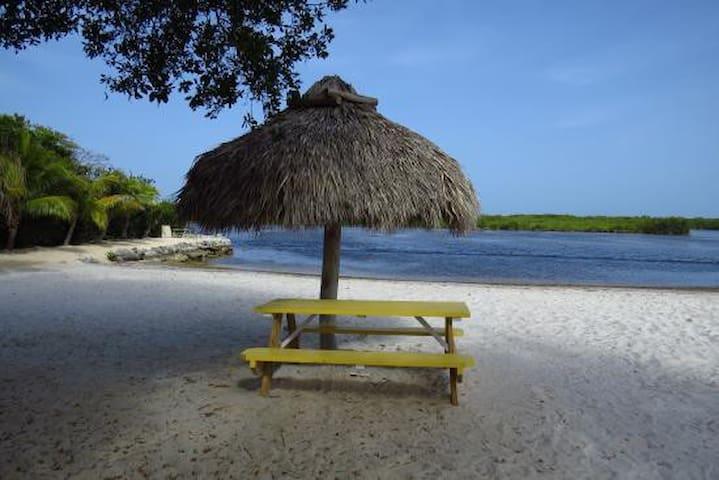 Little piece of paradise