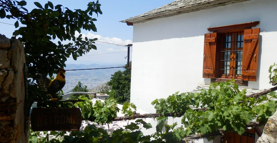 Traditional Country house - Μακρινίτσα - Dom