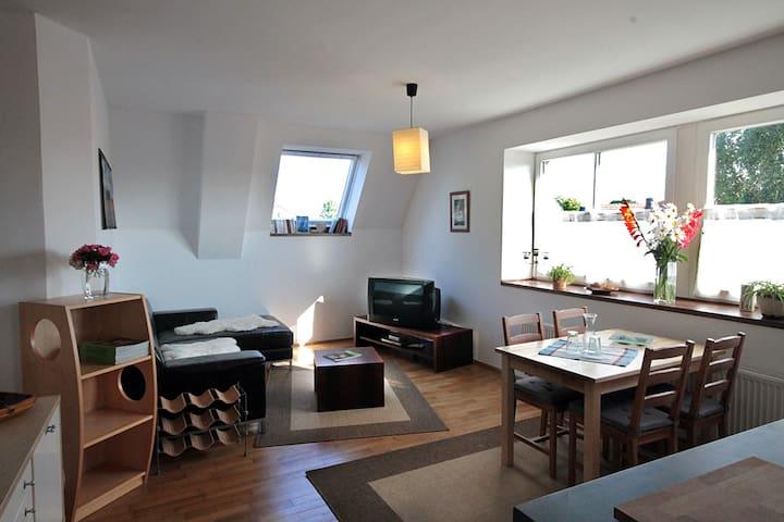 Schöne Ferienwohnung auf dem Land - Wettringen - Appartement