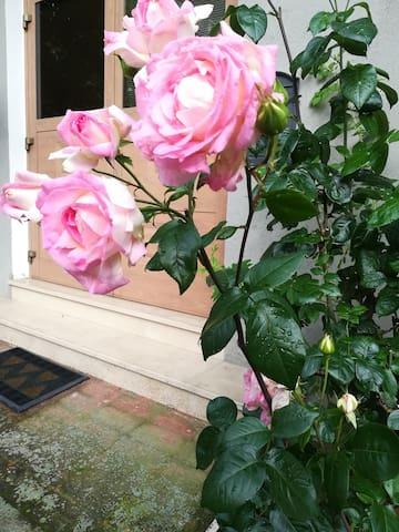 casa delle rose sarnano