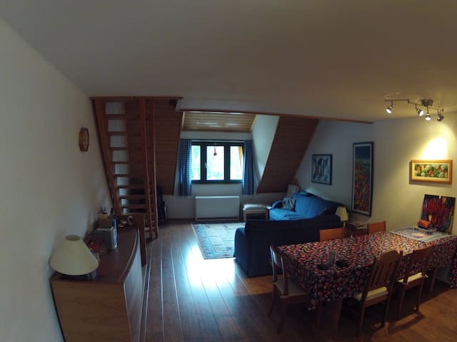Appartment in beautiful Todtmoos - Todtmoos - Apartemen
