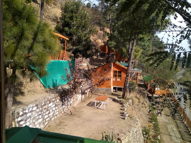 Duplex Tree Cottage With Break Fast - Solan