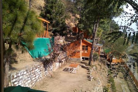 Duplex Tree Cottage With Break Fast - Solan - Casa en un árbol