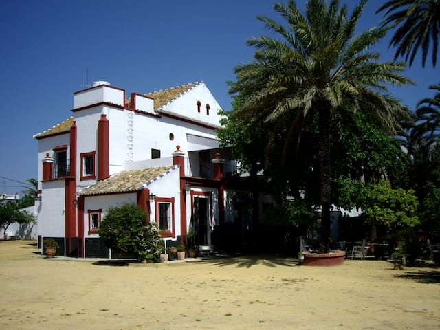 HACIENDA DE GRACIA. RURAL PROPERTY AT URBAN AREA - Seville