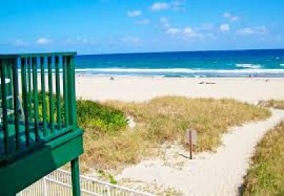 Oceanfront Condo Spring Break Condominiums For Rent In