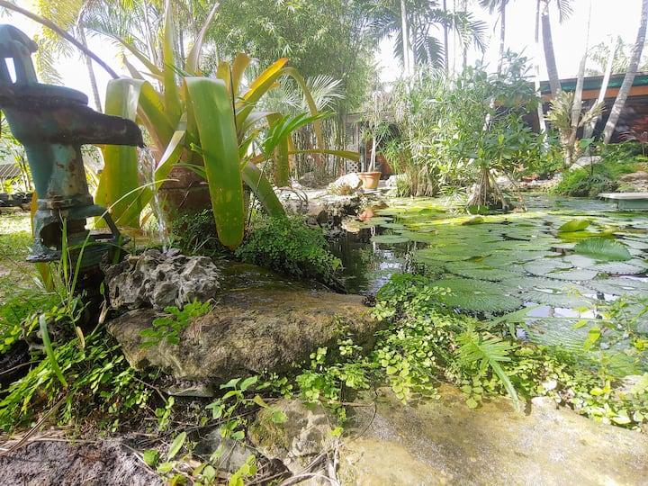 Tropical Paradise: Sanitized w Ozone as hospitals
