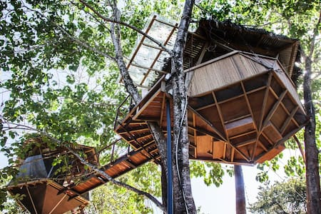 Sacred Geome-Tree House - Montezuma - Treehouse