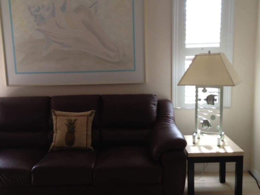 Brown leather TV room