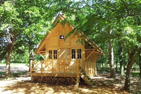 Cabane Lodge - Champigné