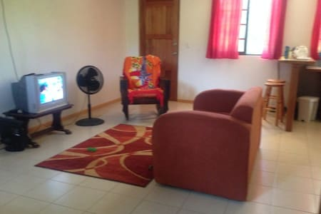 Fully equipped Apt. Playa Tortuga - Ojochal - Apartment