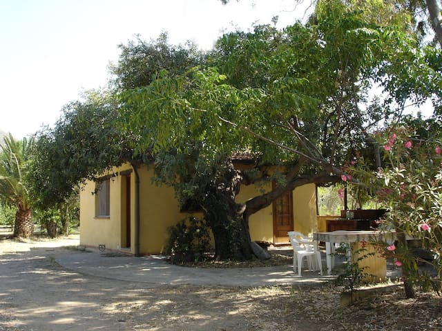 Carob Tree Cottage: cosy, joined to the beach - Cefalù - Cabin