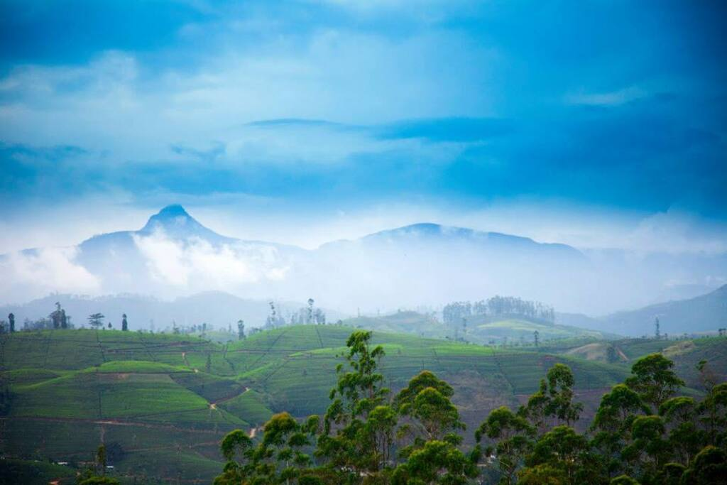 Adams peak on misty day